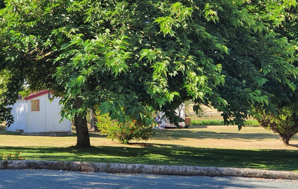 Aire camping-car à Pamproux (79800) - Photo 1